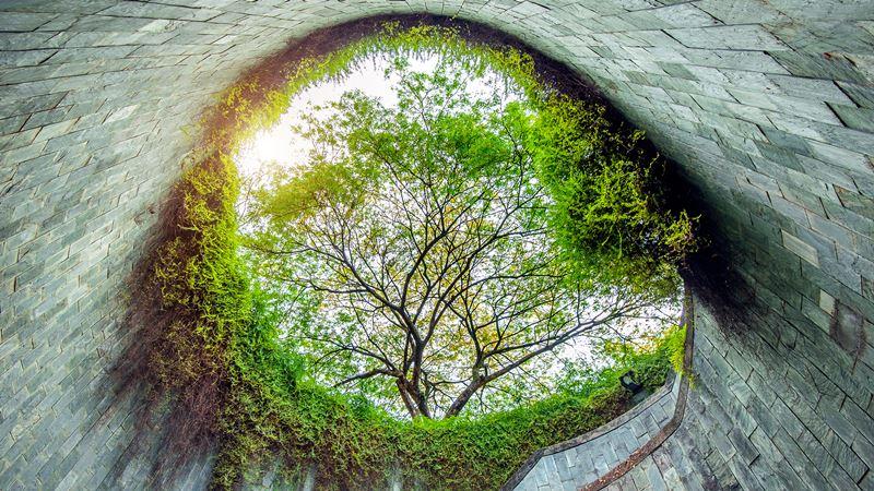 Çevresel Etki Değerlendirme, Çed Raporu Alan Şirketleri İstanbul